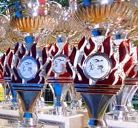 Pokal200